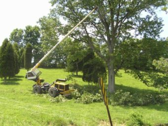 Lineman clearing tree for right-of-way